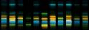 Cromatografía en capa fina, HPTLC